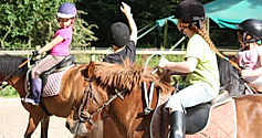 Poney-club des Eiders - Enseignement, baptèmes, balades, stages, animations