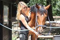 Ecuries des Eiders - enseignement pour adultes débutants ou confirmés en reprise de l'équitation