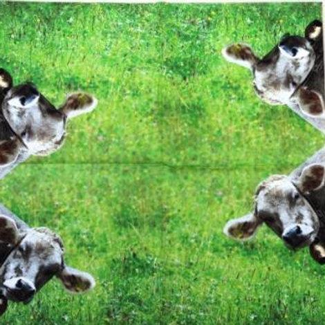 10 x Nosey Cow Napkins