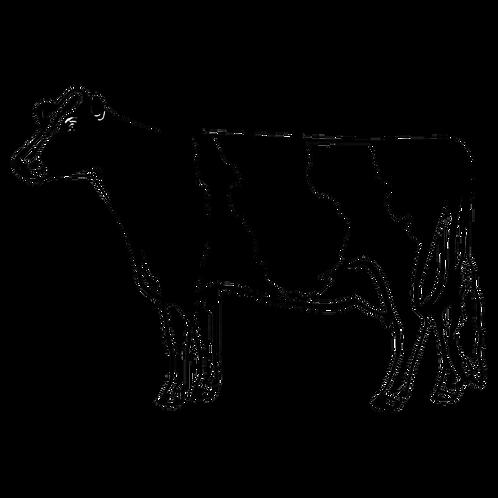 Cow Decal vinyl Sticker