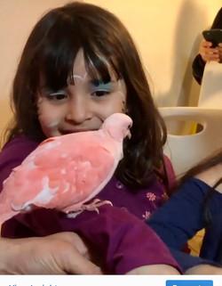 Nice girl with pink bird