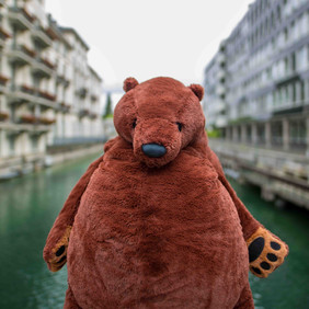 VAY Bear