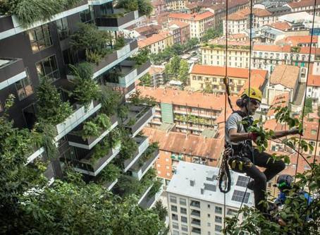 Кризис создает перспективы для инвестирования в зеленое строительство