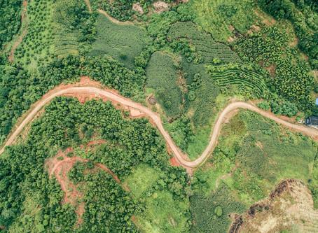 WWF России создал онлайн-базу с кейсами успешного применения правовых методов охраны природы