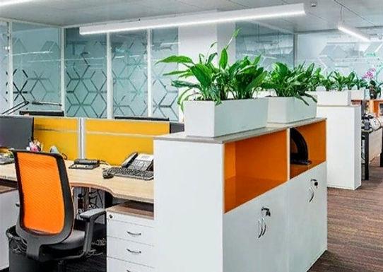 Офис компании IPSEN подтвердил сертификат ECOGREENOFFICE