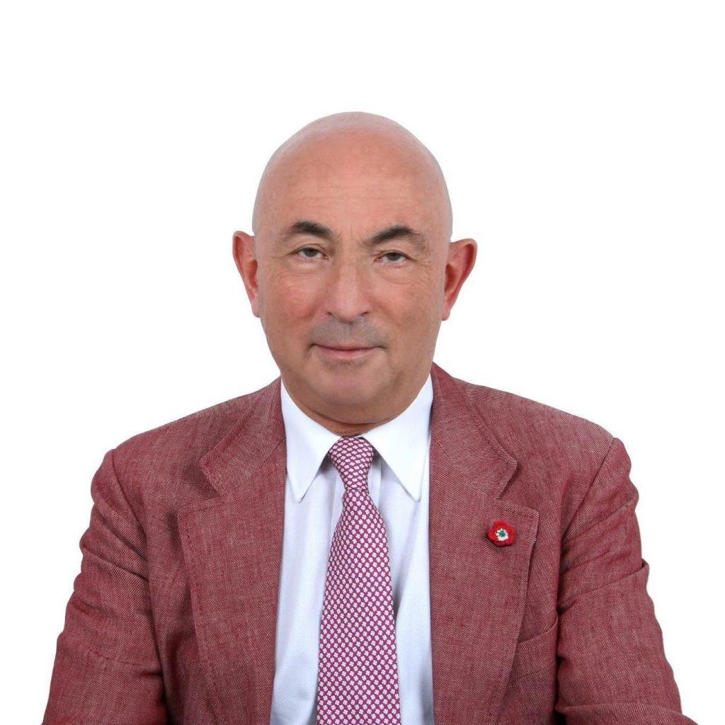 Luigi Angelini (In Office 2011-2013)