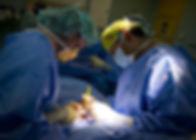surgery-857135_1280.jpg
