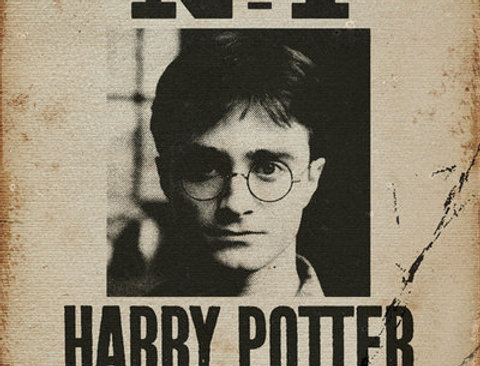 612 HARRY POTTER Undesirable No 1