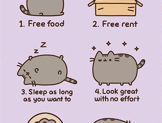 547 Pusheen (Reasons to be a Cat)