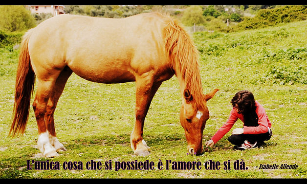 Amore%20possiede_edited.jpg