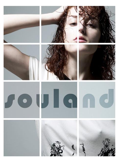 Souland 01.jpg