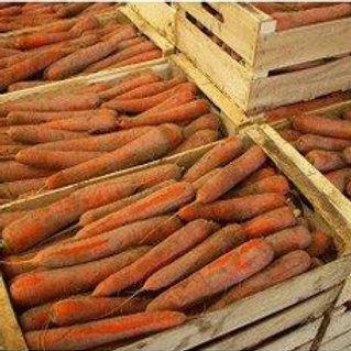 promo d hiver  carottes x  20 kg