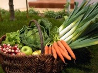 Panier de légumes 20kg