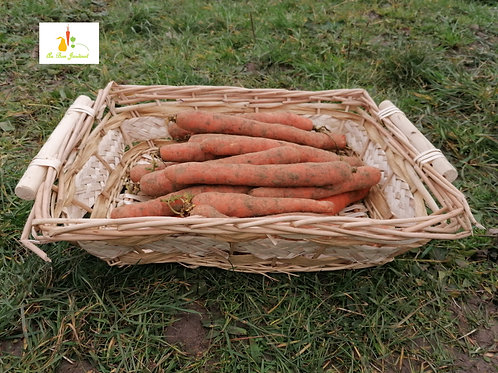 carottes x 1kg