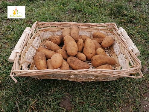 Pommes de terre nouvelle amandine x 1kg