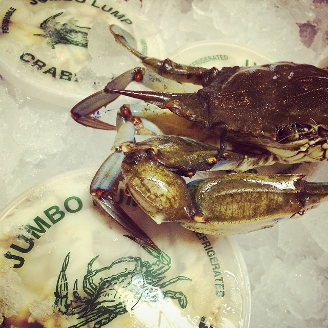 Instagram - The fall season is here and local #Crab is in it's prime! Not too ma