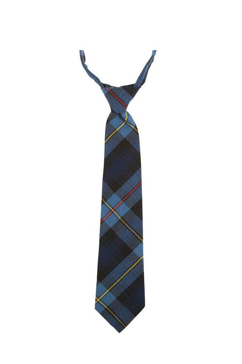 Men's/Boys Plaid Neck Tie