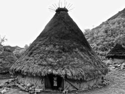 Nuhué