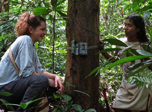 Young scientist in Colombia, learning and living the job of conservation