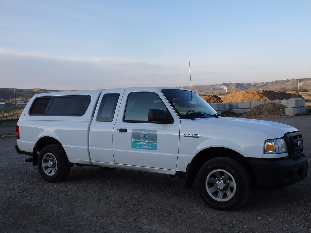 The pet limo:  A fully covered Ford Ranger.