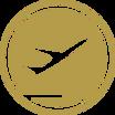 International Flights icon