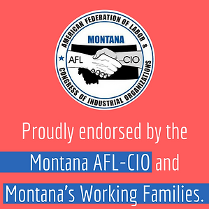 AFL-CIO_EndorsementImage_2020.png