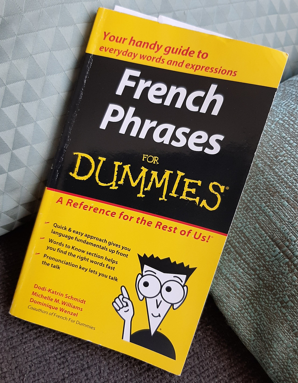 I'm definitely the dummy when it comes to French!