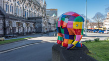 Elmer in Plymouth, Devon