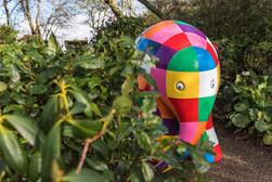 Elmer in Plymouth