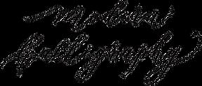 モダンカリグラフィータイトル.png