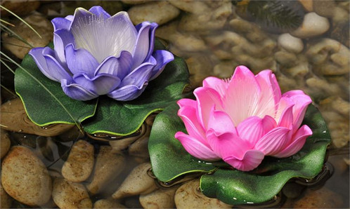 Led lighted pink or purple lotus flower pond floatie illuminate your pond pool or fountain with these gorgeous led lighted lotus flower floaties from our enchanted garden collection mightylinksfo
