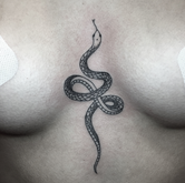 Snake by Nika