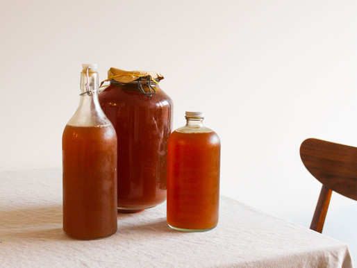 Kombucha Workshop with CreativeMornings and A Donation to UPenn's Fine Arts Library