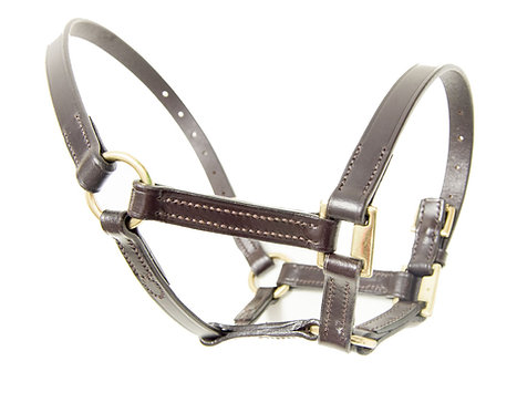 Ascot Leather Foal Head Collar