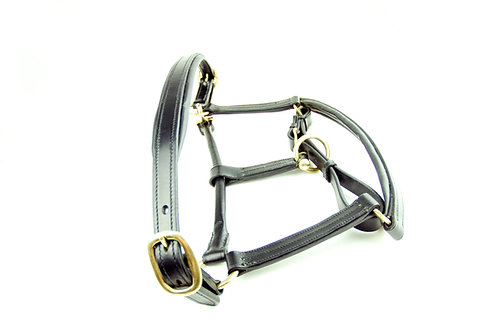 Ascot Padded Leather Head Collar
