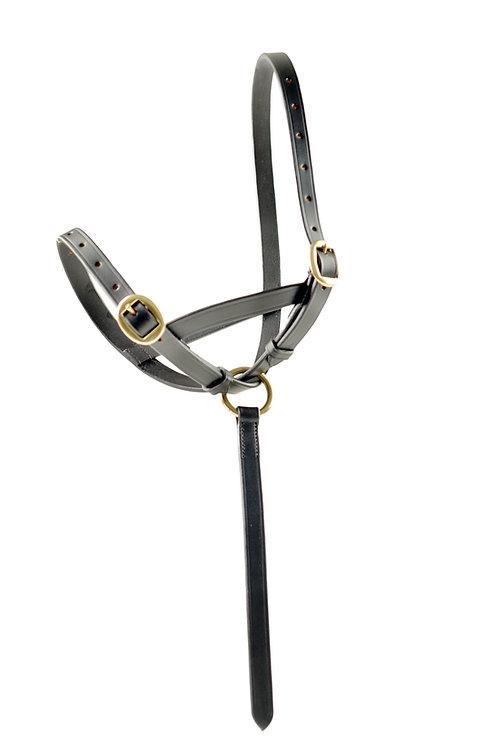 Ascot Foal Slip