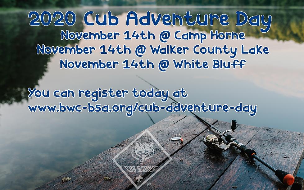 2020 Cub Adventure.png