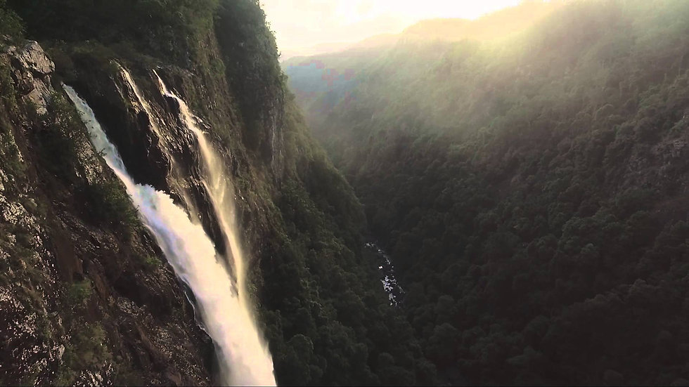 SCENIC FLIGHT - ELLENBOROUGH FALLS
