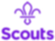 Scouts_Logo_Stack_Purple.jpg