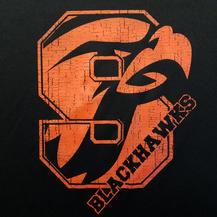 Blackhawks (Print)