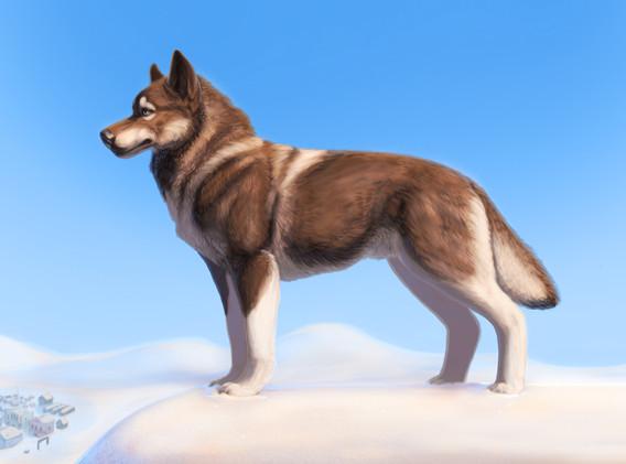 Hero of Nome