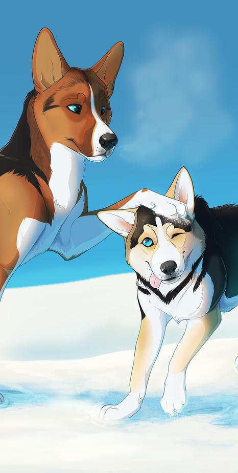 Sora and Nami