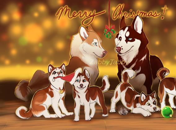 Husky Family Christmas