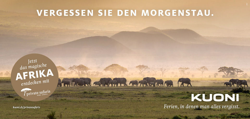 13_OOH_PSAF_Morgenstau_F12_DE.jpg
