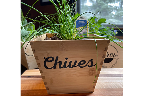 Bamboo Herb Planters