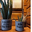 Thumbnail: Say Aloe to My Little Friend Pot Set