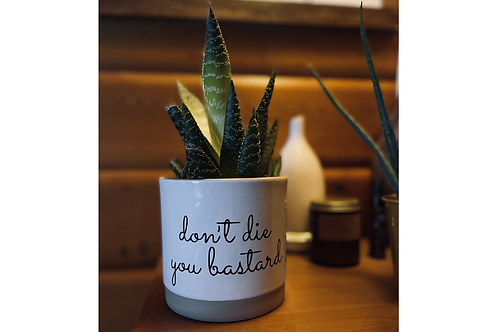 Don't Die Plant Pot