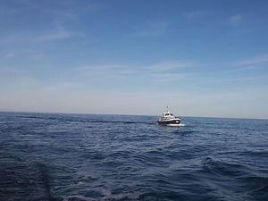 Scheepvaartbegeleiding