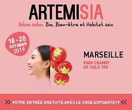 BANNIERE-ARTEMISIA-MARSEILLE-19-300x250p