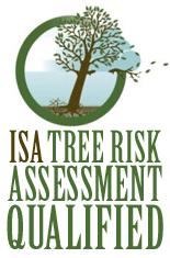 ISA+risk+logo.png